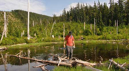 The Boundary clear cut consumed this tiny lake. The trees behind mark the wilderness boundary as it rides over the ridges