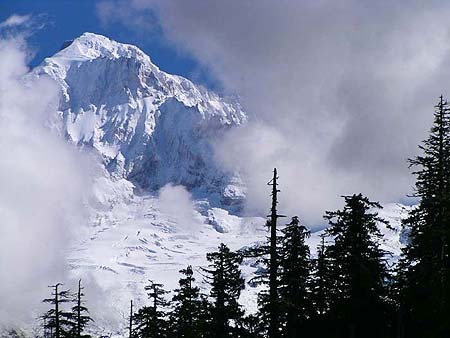Mount Hood towering above Lolo Pass