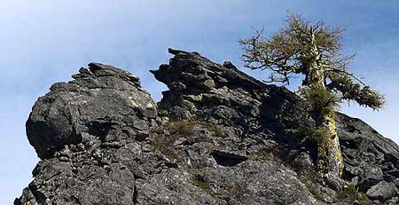 "The ""face"" of Tamarack Rock from the Surveyors Ridge Trail."