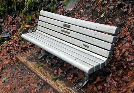Memorial bench along the Latourell Loop Trail