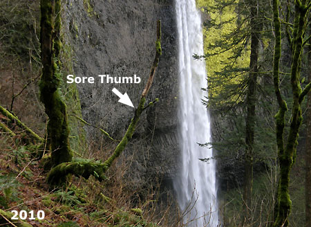 …and the sore thumb that once was…