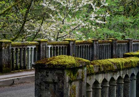 The venerable Latourell Creek Bridge is among the most impressive on the old highway