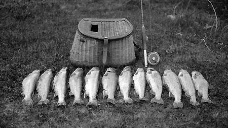 Alva's Lost Lake bounty (Source: Hood River History)