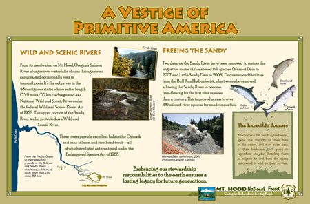 This sign will appear near the Salmon River (USFS)