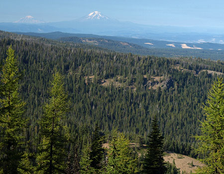 Views from the open ridgetops in Fifteenmile Backcountry extend north to Mount Adams and Mount Rainer in Washington