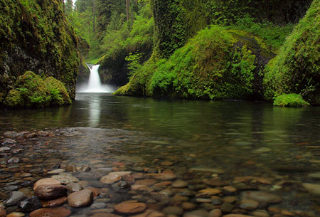 This 1/2 second exposure of Punch Bowl Falls on Eagle Creek was captured with only a polarizer