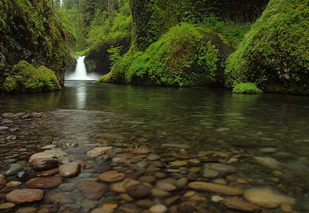 A less traditional, super-wide view of Punch Bowl Falls captures some stream details