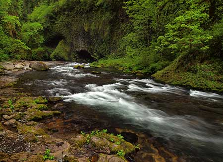 The beautiful grotto below Punch Bowl Falls is well worth photographing, too!