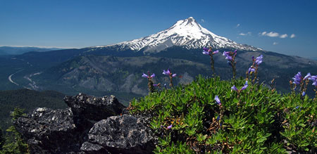 Mount Hood from the west summit of Lookout Mountain