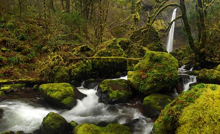 March: Elowah Falls in late winter hues