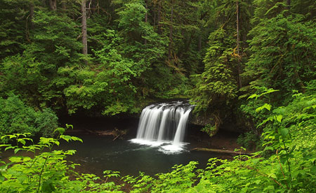 May: pretty Upper Butte Creek Falls is tucked away in serious logging country