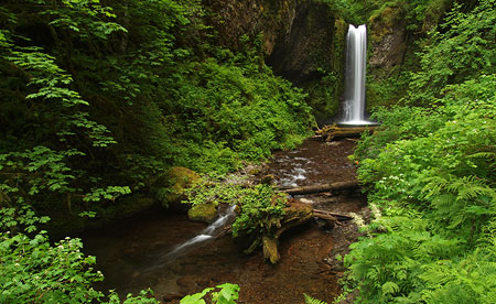 September: Albert Wiesendanger earned a place name with his falls on Multnomah Creek