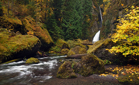 November: Tanner Creek as it would normally appear in early November