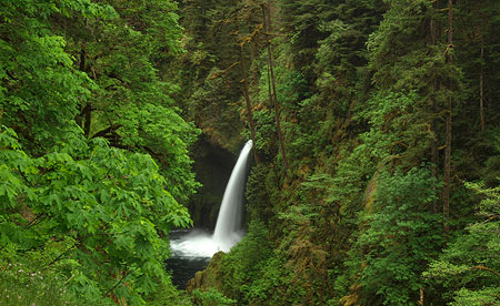 Metlako Falls (from the wrong side of the fence)