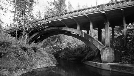 H.R. Angwin's Salmon River Bridge in Lincoln County