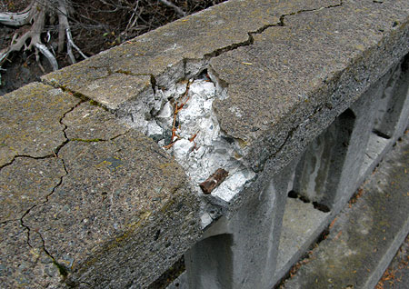 Frost damage to the railings on the Sahalie Falls Bridge in 2009