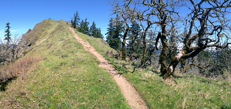 The east loop would join the Mitchell Point trail at this point along the summit ridge