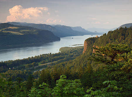 Columbia River Gorge from Chanticleer Point