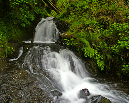 Small cascades in Shepperd's Dell