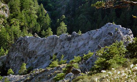 """Badlands Basin: """"The Iguana"""""""