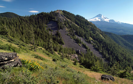 Shellrock Mountain and Mt. Hood from the Surveyors Ridge Trail