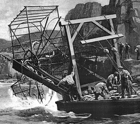 1890s Harpers Weekly illustration of a Columbia River fish wheel