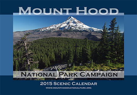The view from Owl Point is the cover image for 2015