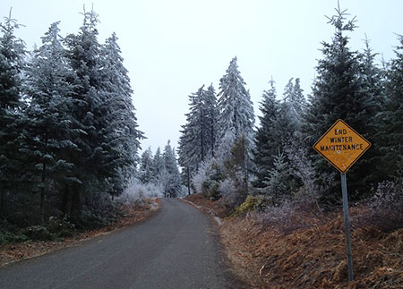 Winter wonderland ahead!