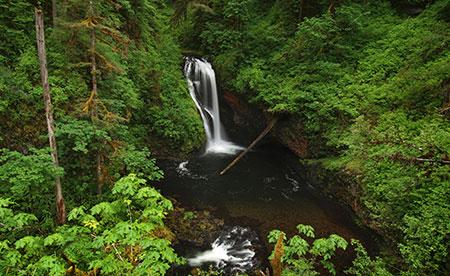 June features Butte Creek Falls