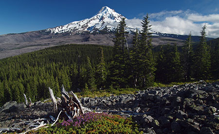 July features Mount Hood from Owl Point
