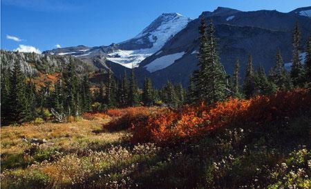 October features beautiful Elk Cove in autumn