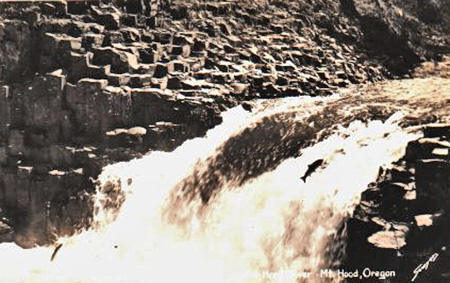 Early 1900s postcard view of salmon jumping Punchbowl Falls