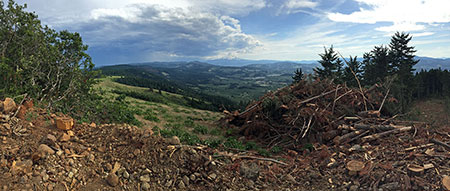 Anywhere else, this would be a national park or preserve… here, just another clearcut (same spot as the opening photo)