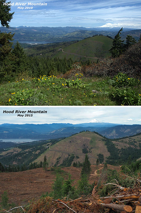 Then-and-now view north toward Mount Adams from the summit