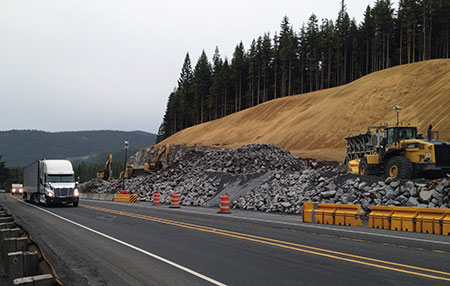 What the slope across from Mirror Lake looks like now